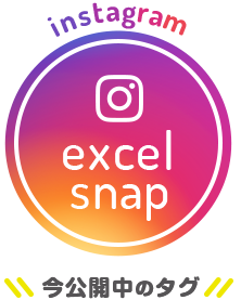 instagram excelsnap